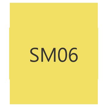 sm06h