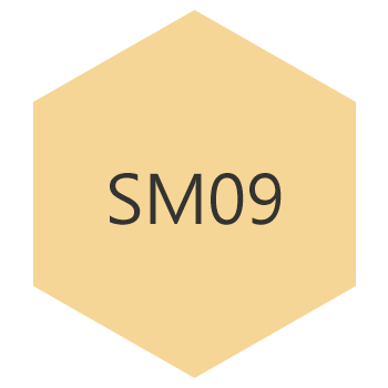 sm09h